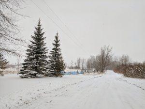Northern Michigan Snowy Driveway